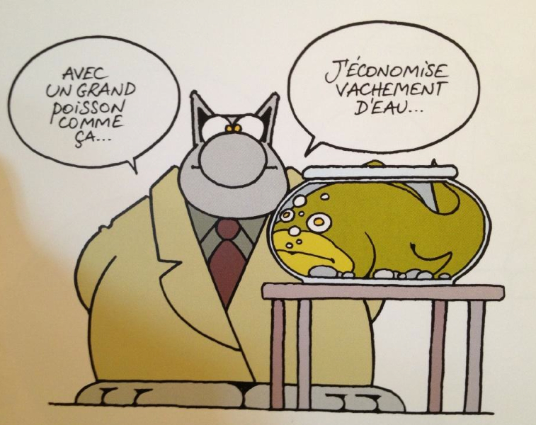 Rubrique humour ? Lechat